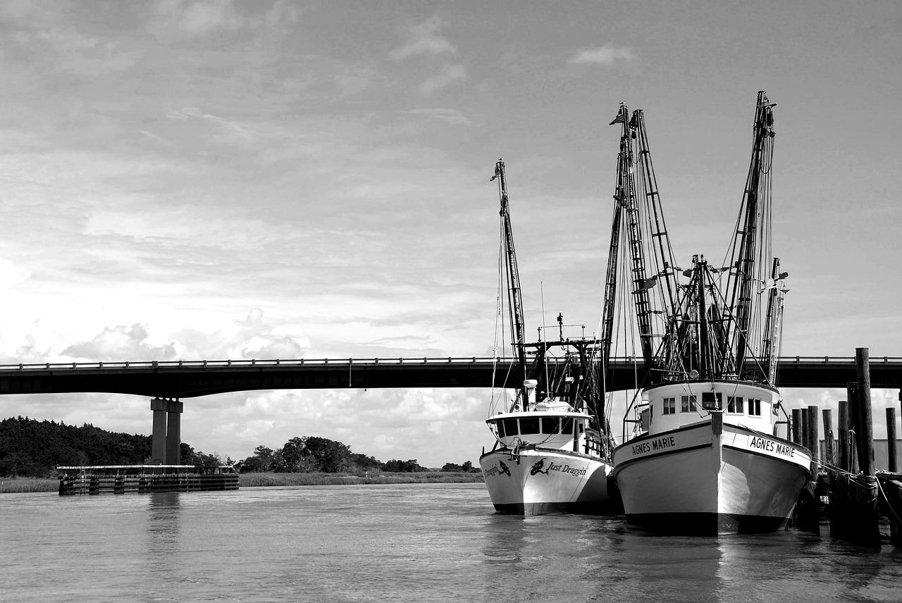 Pesca, Comercial